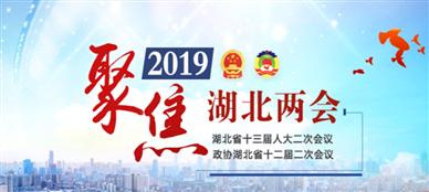 2019湖北省两会