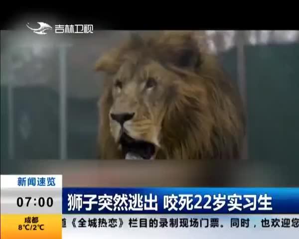 狮子突然逃出 咬死22岁实习生