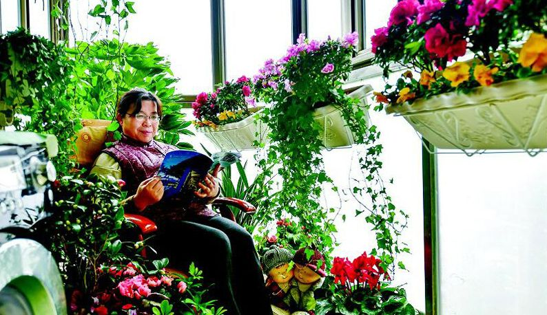 武汉园林部门惠民送花 为市民免费打造花园阳台