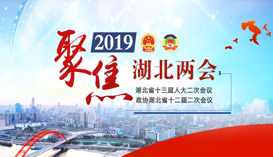专题:聚焦2019湖北两会