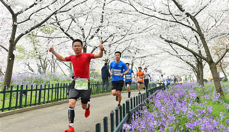 东湖绿道大学生半程马拉松樱花树下开跑