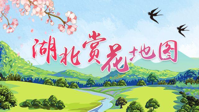 人间四月天!荆楚网推出《湖北赏花地图》