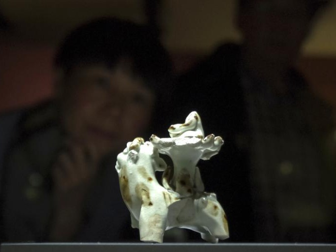 """""""殊方共享——丝绸之路国家博物馆文物精品展""""在北京开幕"""