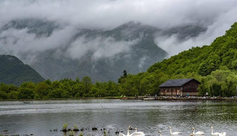 从开山伐木到全面保护——神农架国家公园的生态协奏曲