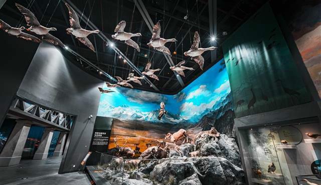 国际博物馆日,来看看湖北的新玩法!