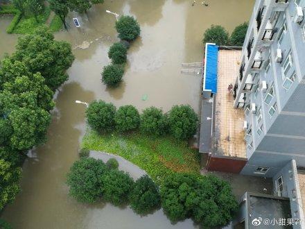 武汉普降大暴雨,城区多处渍水(组图)