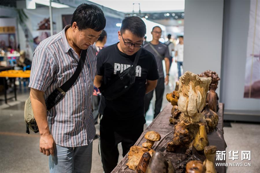 2019玉溪市文化产业博览会开幕