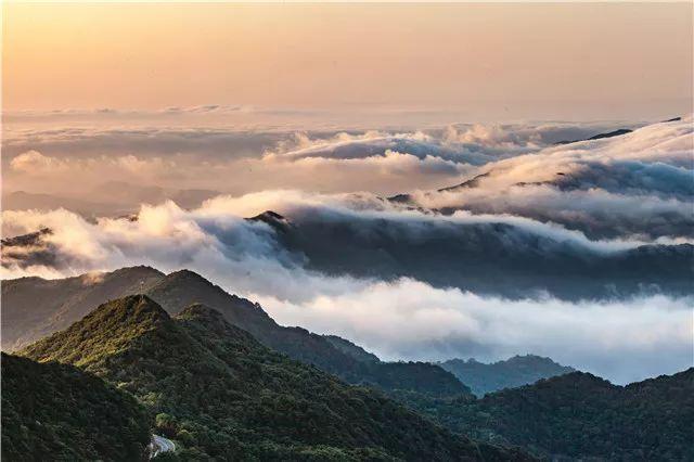 最美的风景在路上!大洪山马拉松之约,亮点抢先看···