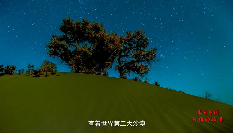 来自中国新疆的故事——沙漠使者