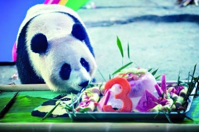 http://www.k2summit.cn/jiaoyuxuexi/917546.html