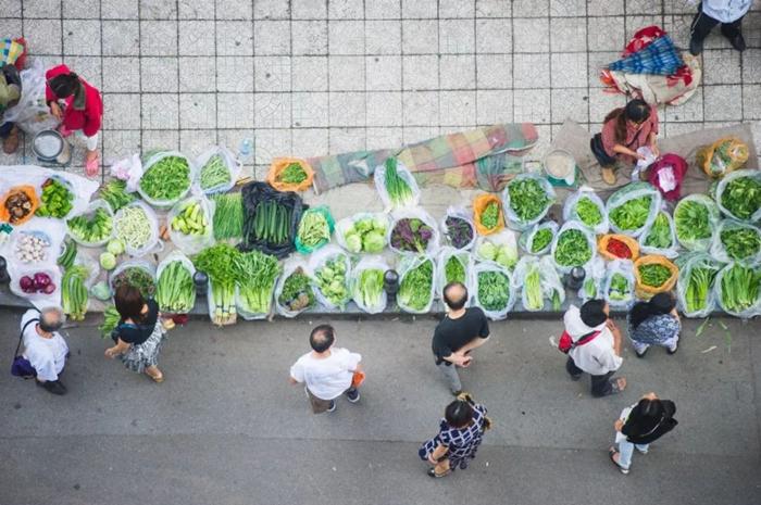 四季都吃到蔬菜,中国为什么能?
