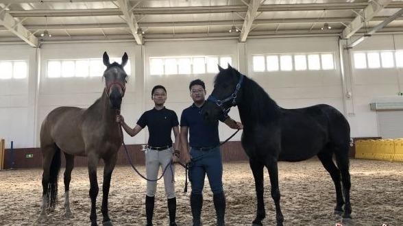 帅!山西女孩带两匹马来武汉上大学