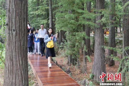 """""""""""最美山水赛场""""武汉东湖:""""三条大道""""铸就城市绿心"""