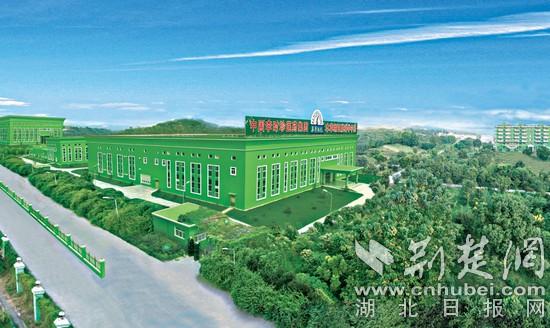 """黄冈构建""""两核三组团""""大健康产业空间体系"""