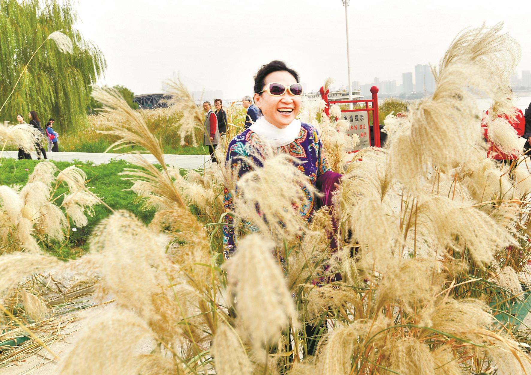 芦花节和地书大赛在汉口江滩同期举行