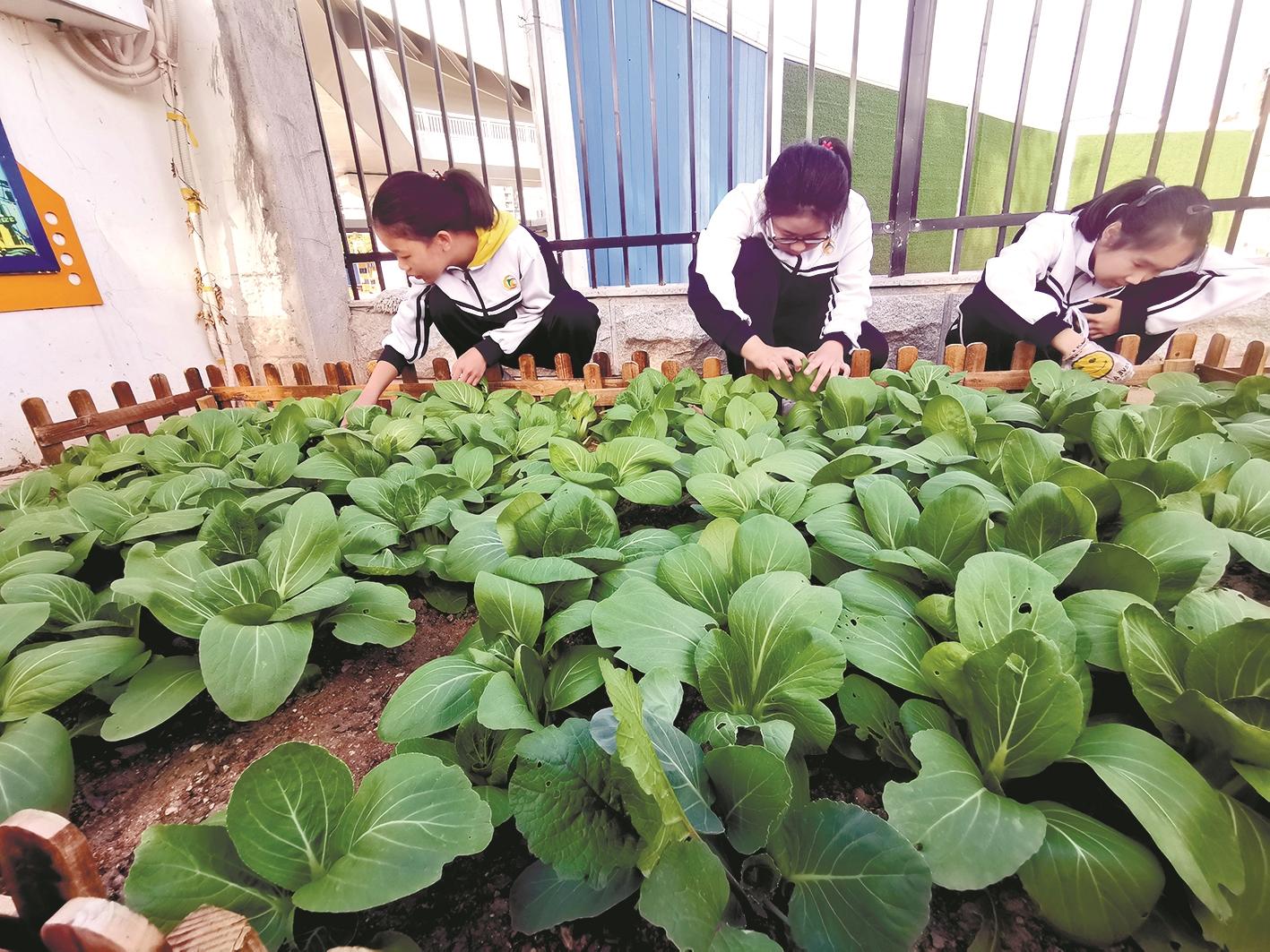 http://www.shangoudaohang.com/shengxian/246555.html