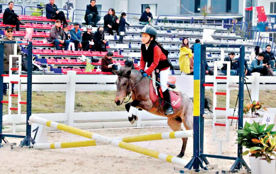 湖北首次舉辦青少年馬術賽 百名小騎士同場競技