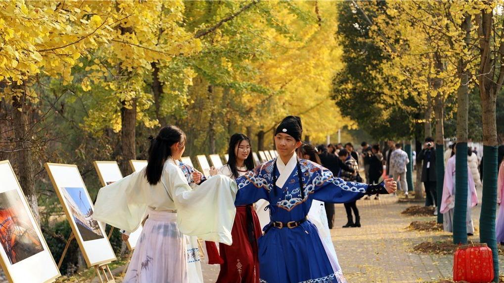 三峡大学举办首届银杏艺术节