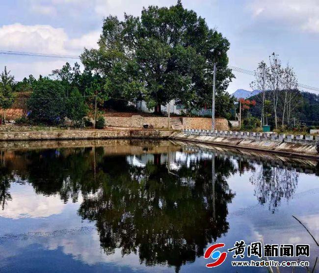 陡岸村的蝶变  ――红安县房屋征收与补偿办公室扶贫工作队助力陡岸村巨变