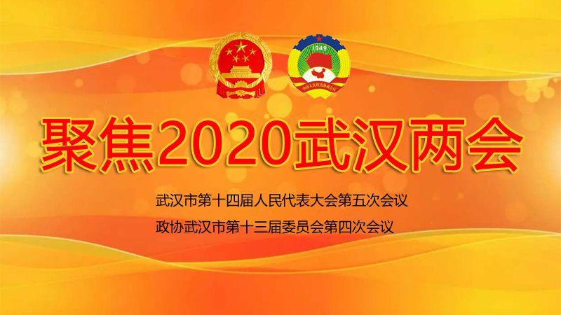 聚焦2020武漢兩會