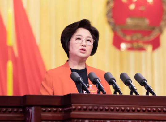 省人大常委会副主任王玲向大会作省人大常委会工作报告