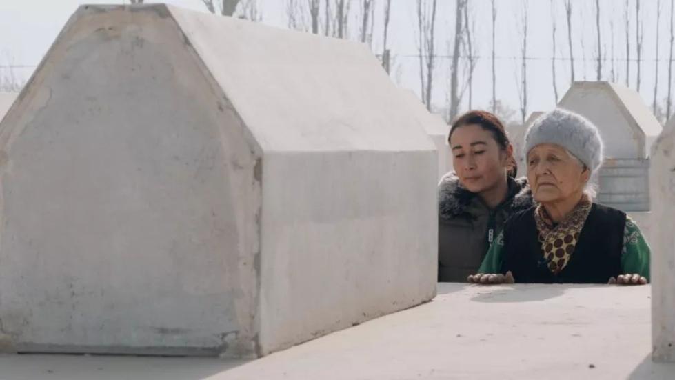 维族人口_维吾尔族人口解放前只有200万,为什么会在短短几十年里突破千万