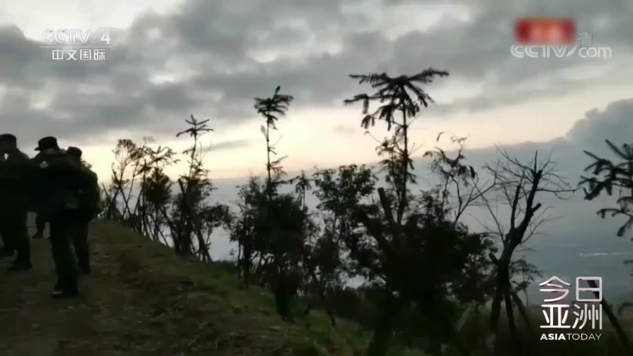"""臺灣墜毀""""黑鷹""""黑匣子已找到"""