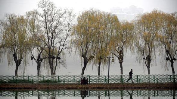 武漢:水墨金銀湖
