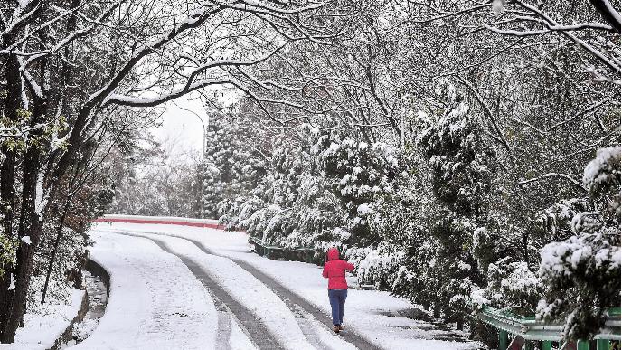 2020年第一场雪不期而遇