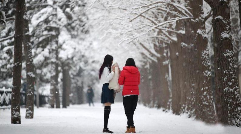 瑞雪兆豐年!全國多地迎2020首場降雪