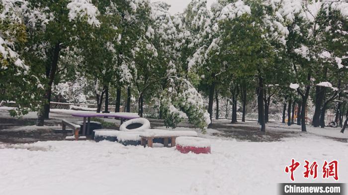 安徽多地迎来2020年首场降雪 积雪最大深度13厘米