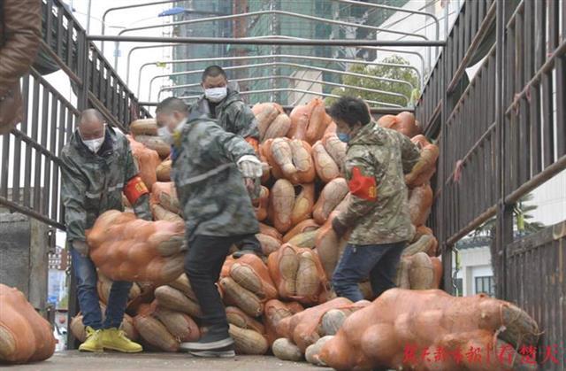 抖音网红牵线,20吨爱心蔬菜从广
