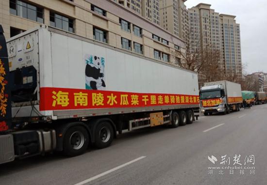 海南捐赠210吨蔬菜瓜果抵达黄石