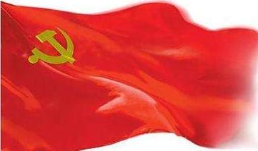 【让党旗在防疫一线高高飘扬】和平村的逆行者