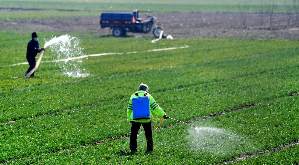 忙春耕!这些地方如何做到不负农时不负春?
