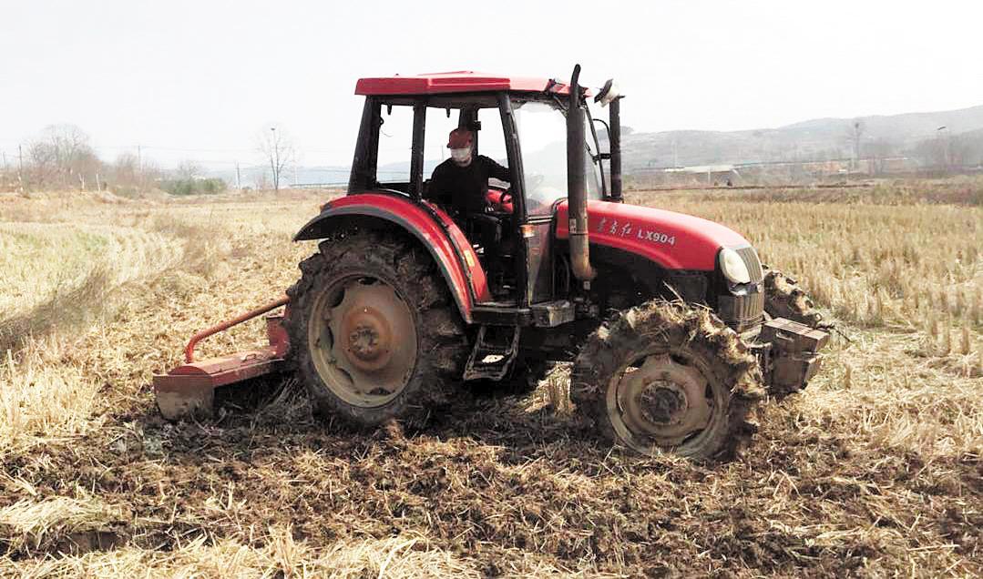 武汉农业生产逐步恢复 为打赢疫情防控阻击战提供有力支持