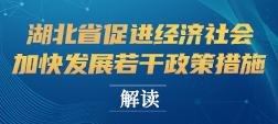 《湖北省促进经济社会加快发展若干政策措施》解读