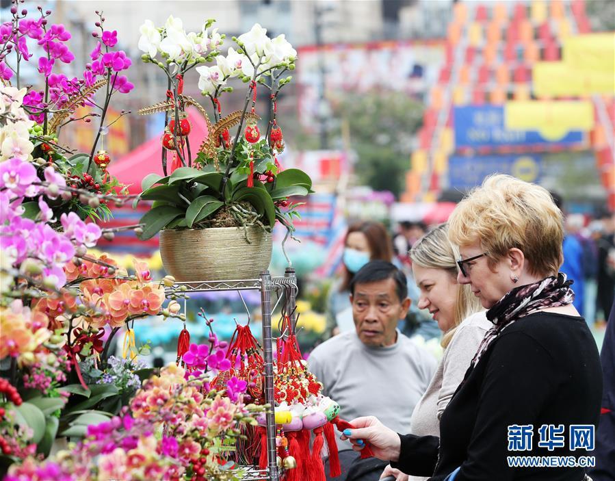 香港:选购花卉迎佳节