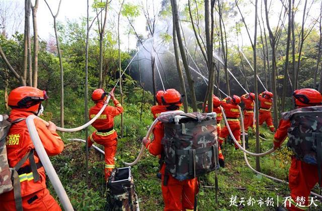 警惕森林火灾!武汉演练森林灭火