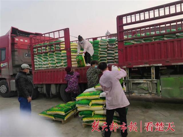 她的手机号码变成送粮热线,米业公司女老板紧急复工日供十万斤大米