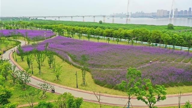汉口江滩四期美如画