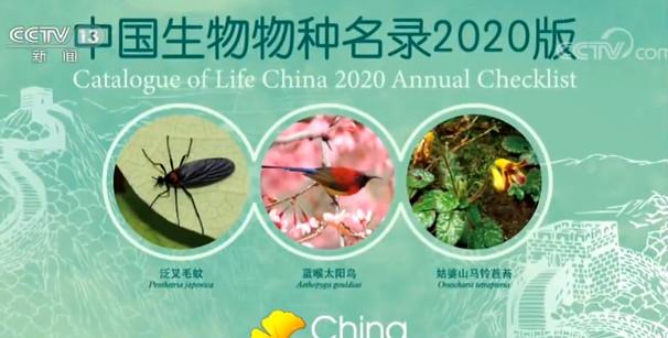 《中国生物物种名录2020版》发布