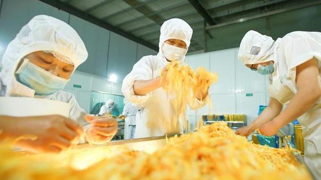 复产以来 秭归脐橙加工出口创汇达1100万美元
