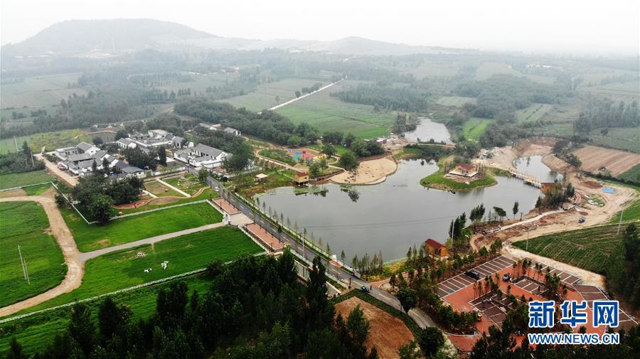 山东汶上:绿色乡村 美丽宜居