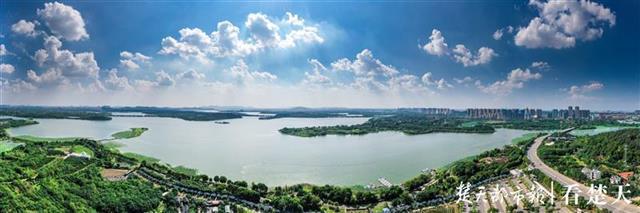 后官湖,一颗镶嵌在武汉西部的湿地明珠