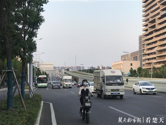 800米路段无过街通道,行人翻越绿化带过马路