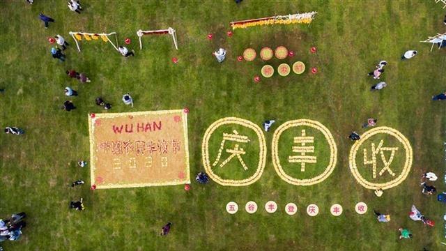 武汉欢庆中国农民丰收节