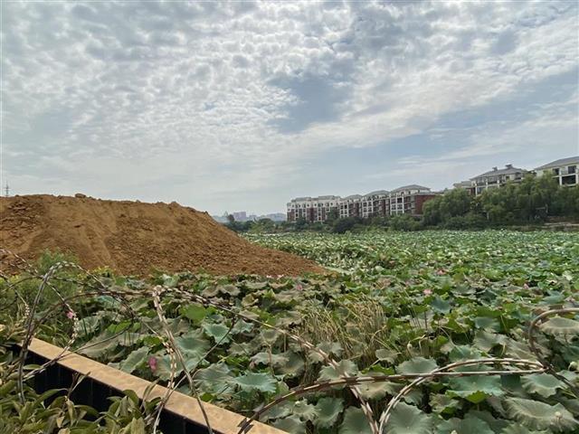 塘边倾倒渣土产生噪音粉尘扰民,水务部门:已要求暂停施工整改