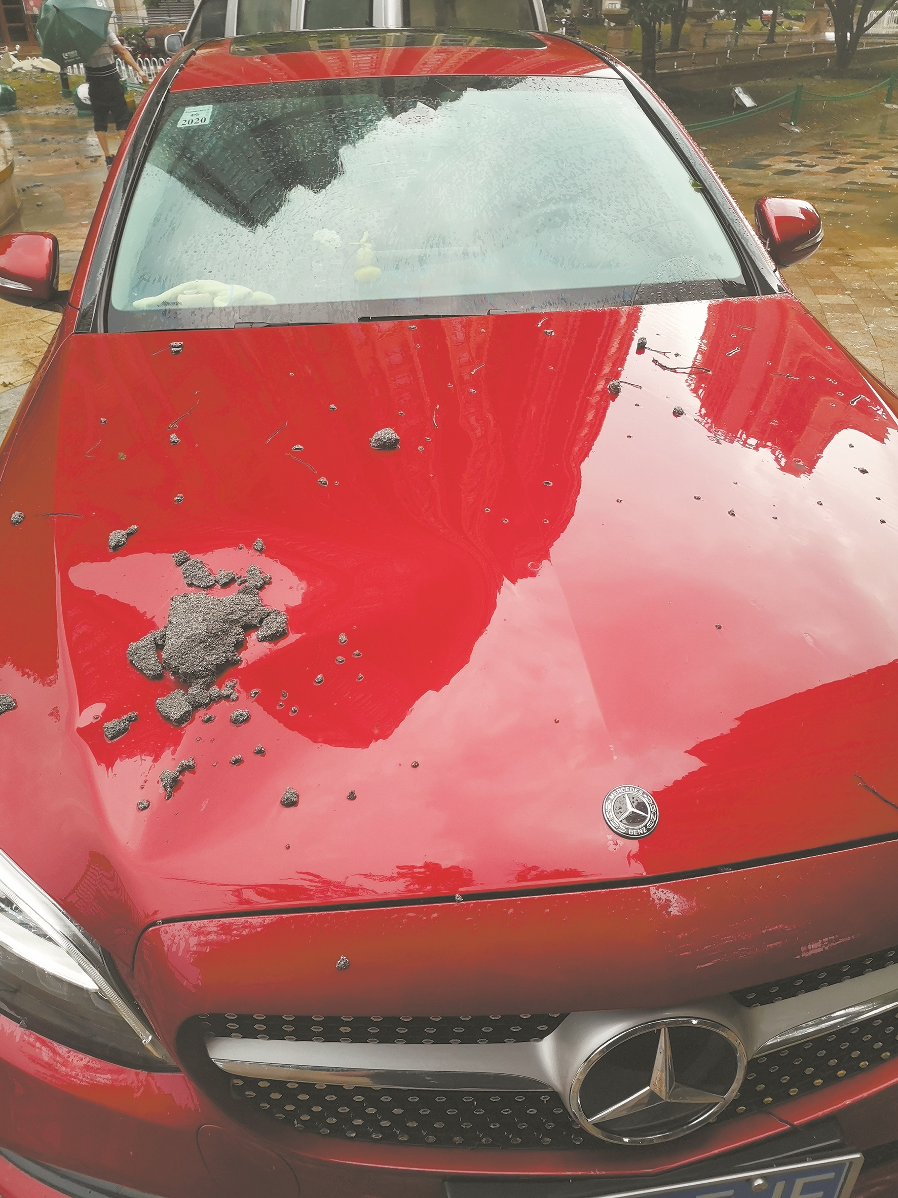 业主奔驰车引擎盖被坠物砸了个大坑