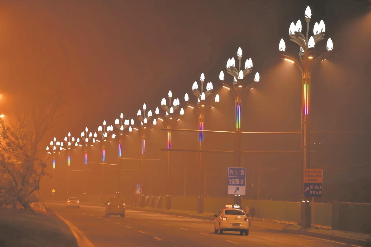 光谷高新大道首批白玉蘭燈點亮